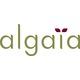 Algaïa