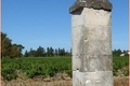 DOMAINE DE LA BISCARELLE