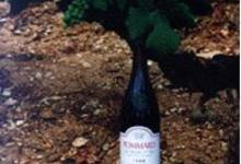 DOMAINE VIRELY ROUGEOT