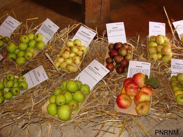 F te de la poire et de la pomme 2009 barenton 50720 - Maison de la pomme et de la poire ...