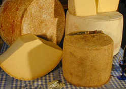 Cantal AOC