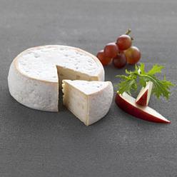chevrotin fromage de ch 232 vre 224 p 226 te press 233 e non cuite et cro 251 te lav 233 e aoc aop