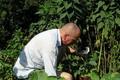 Thomas le jardinier