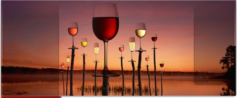 Salon des vins de loire 2010 angers 49000 for Calendrier salon des vins