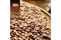 Café Moka Sidamo, Ethiopie
