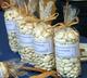 haricots de Soissons