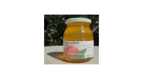 miel de rhododendron