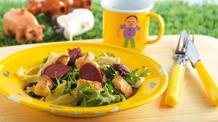 recette salade de g siers de canard confits. Black Bedroom Furniture Sets. Home Design Ideas