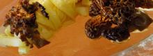 Tagliatelles sauce Newburg aux morilles
