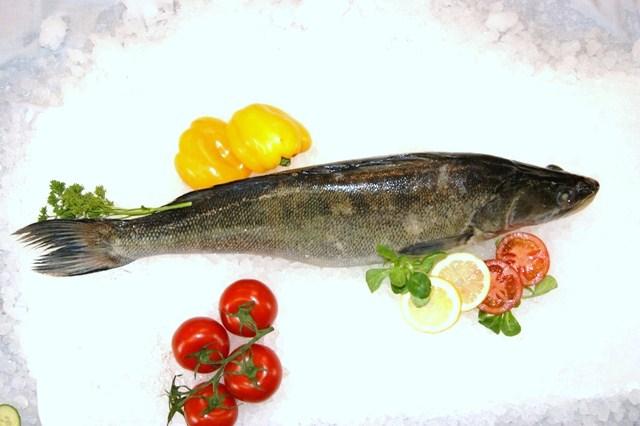 Filet de poisson frais en ligne for Commander poisson en ligne