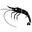 Fête de la crevette de Honfleur 2010