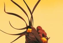 les produits chocolatiers