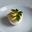 L'oeuf dur à la mayonnaise