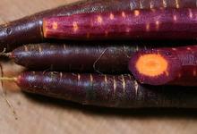 La carotte de sable de santec