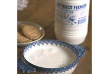 Le lait ribot
