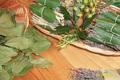 Le soleil de Provence dans vos assiettes, toute l'année !