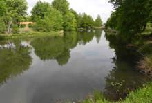 étang de Moré à Morcenx