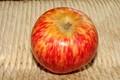pomme de Risoul