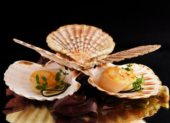 Adresse Restaurant La Gourmandise St Malo