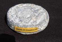 cendré de Champagne