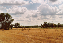 paysage du Bergeracois