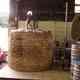 Brasserie du Bouffay