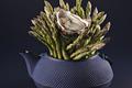 Huitres Marennes Oléron, Thé vert, lait de soja et asperge
