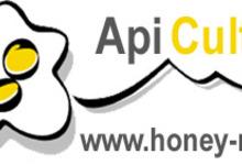 Api-culture: miels typés et authentiques