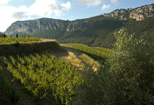 Domaine de Val d'Arenc, Hauts De Seignol