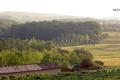 chateau Laulerie, gaec du Gouyat, vignobles Dubard