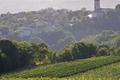Domaine de Belfort, Tour de Belfort