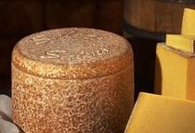fromage de Salers