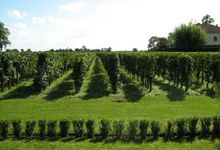 Château Bellegrave, vignobles Jean-Marie Bouldy