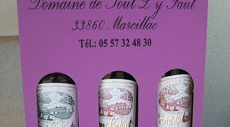 Coffret 3 vins Premires Ctes de Blaye - Domaine de tout l'y faut