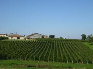 Le Vignoble Charpentier