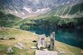 Le lac de Peyrelade