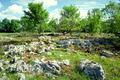 un paysage typique de causse
