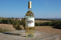 Muscat de Rivesaltes 2010 