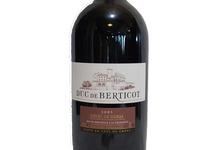 AOC Côtes de Duras - Magnum Duc de Berticot Rouge 2005
