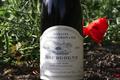 Bourgogne Rouge Côte Châlonnaise