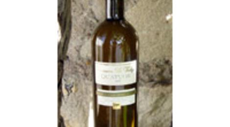 VDP des Côtes de Thau Le Quatuor - Domaine la Fadèze