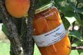 Abricots au sirop