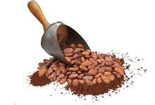 Retour aux sources garanti avec ce produit...Des fèves de cacao enrobées d'une fine couche de chocolat noir puis roulées dans de la poudre de cacao nature ou gingembre, ou encore piment.