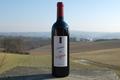 AOC Côtes du Roussillon Villages saveur de Vigne 2009