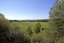 Domaine Riere Cadene