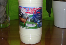 Lait frais entier pasteurisé de chèvre
