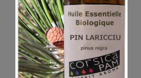 Huile Essentielle Bio De Pin Lariciu