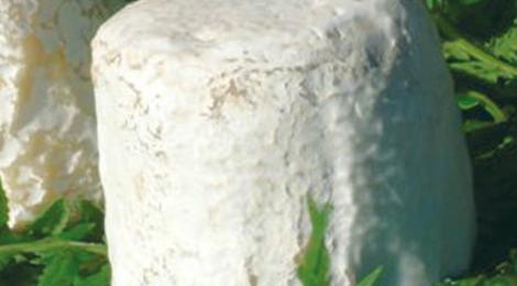 U SAN LURENZU • Crottin de brebis