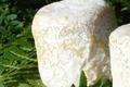 U SAN LURENZU • Crottin de chèvre