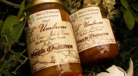 Miel d'Automne (Arbousier)